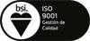 ISO 9001 nuevo web