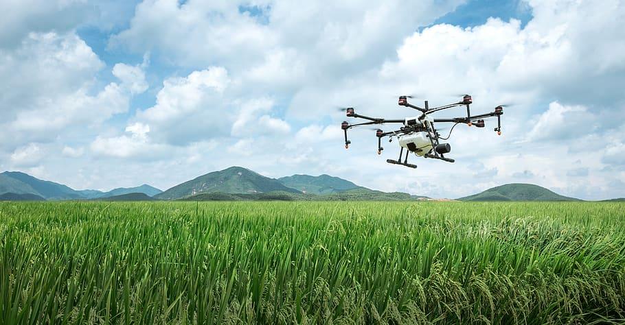 Dron sobrevolando un campo agrícola